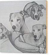 Memphis Belle Wood Print