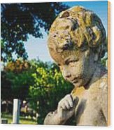 Memphis Elmwood Cemetery - Boy Angel Wood Print