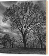 Memphis Winter On The Mississipi 001 Wood Print