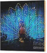 Memphis Zoo Lights Wood Print
