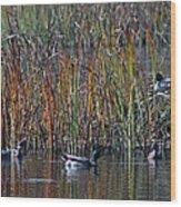 Menagerie Of Ducks Wood Print by Rhonda Humphreys