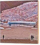 Mendenhall Glacier Juneau 2 Wood Print
