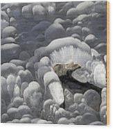 Mendenhall Lake Ice Abstract Wood Print