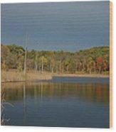 Mendon Ponds Wood Print