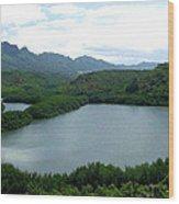 Endangered Menehune Fishpond Wood Print