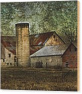 Mennonite Farm In Tennessee Usa Wood Print by Kathy Clark
