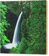 Menteko Falls  Wood Print