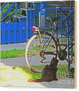 Meow Cat In Verdun Waiting By The Step Beautiful Summer Montreal Pet Lovers City Scene C Spandau Wood Print