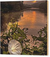 Meramec River At Chouteau Claim Wood Print