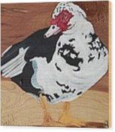 Merganser Duck Painted On Cedar Wood Print