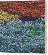 Merging Colors Wood Print