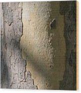 Meridian Wood Print