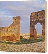 Merinid Tombs Ruins In Fes In Morocco Wood Print