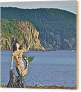 Mermaid On A Dock In Twillingate Harbour-nl Wood Print