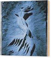 Mermaid Wood Print by Tony V Martin
