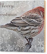 Merry Christman Finch Greeting Card Wood Print