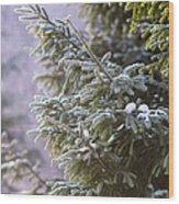 Merry Christmas 5 Wood Print