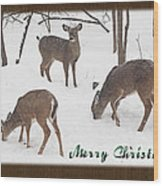Merry Christmas Card - Whitetail Deer In Snow Wood Print