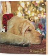 Merry Christmas From Lily Wood Print