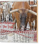 Merry Christmas From The Trail Wood Print