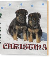 Merry Christmas Puppies Wood Print