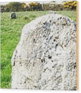 Merry Maidens Stone Circle Cornwall Wood Print
