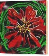 Merry Xtmas - Poinsettia Wood Print