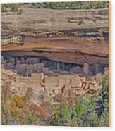 Mesa Verde Cliff Dwelling Wood Print