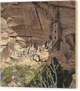 Mesa Verde National Park 1 Wood Print