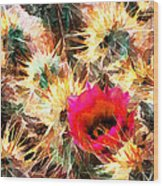 Mesh Of Cactus Needles Wood Print