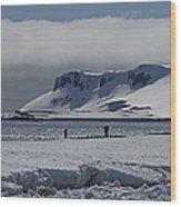Mesmerizing Antarctica... Wood Print