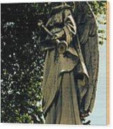 Messenger Of God Wood Print