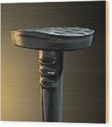 Metal Nail Isolated Wood Print by Allan Swart