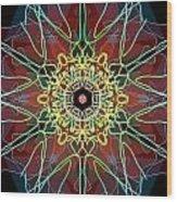 Metamorphosis Wood Print