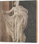 Metaphysics Wood Print