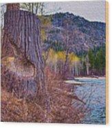 Methow Riverbank Wood Print
