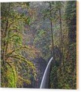 Metlako Falls Oregon Wood Print