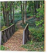 Metroparks Pathway Wood Print