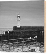 Mevagissey Lighthouse Wood Print