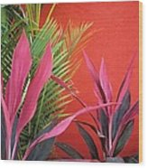 Mexican Garden Stil Life Wood Print