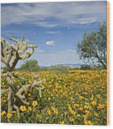 Mexican Golden Poppy Flowers And Cactus Wood Print