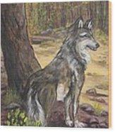 Mexican Gray Wolf Wood Print by Caroline Owen-Doar