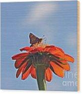 Mexican Sunflower Hat Dance Wood Print