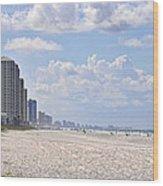 Mexico Beach Coastline Wood Print