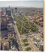 Mexico City Aerial View Wood Print by Jess Kraft