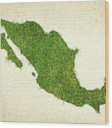 Mexico Grass Map Wood Print by Aged Pixel