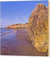 Mexico, Gulf Of California, Baja Wood Print