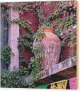 Mexico, San Miguel De Allende, Ivy Wood Print