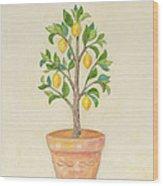 Meyer Lemon Tree Wood Print