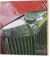 Mg Magnette Wood Print
